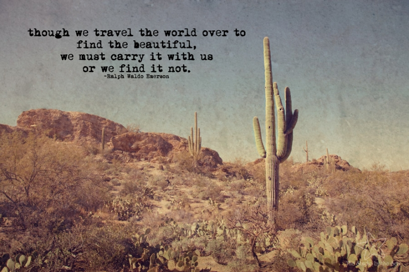 saguaro with quote
