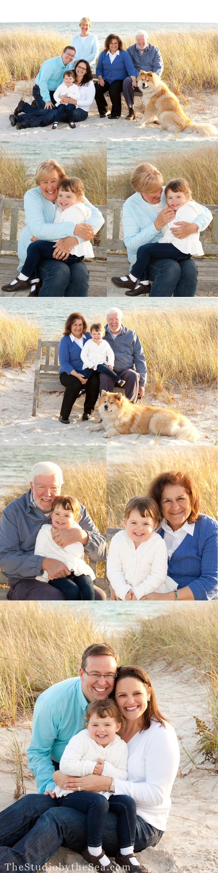 A group of generational portraits on Cape Cod