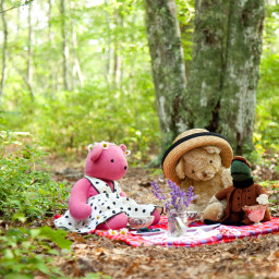 Teddy Bears and friend having a picnic