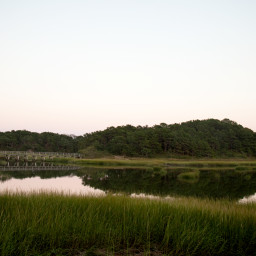boardwalk and marsh at sunset